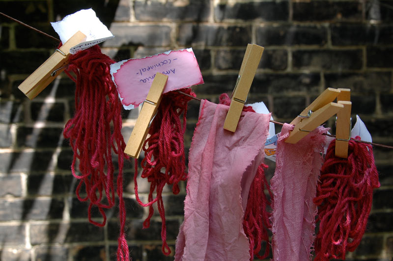 Samples of red dyed wool and fabric hang from a wire.