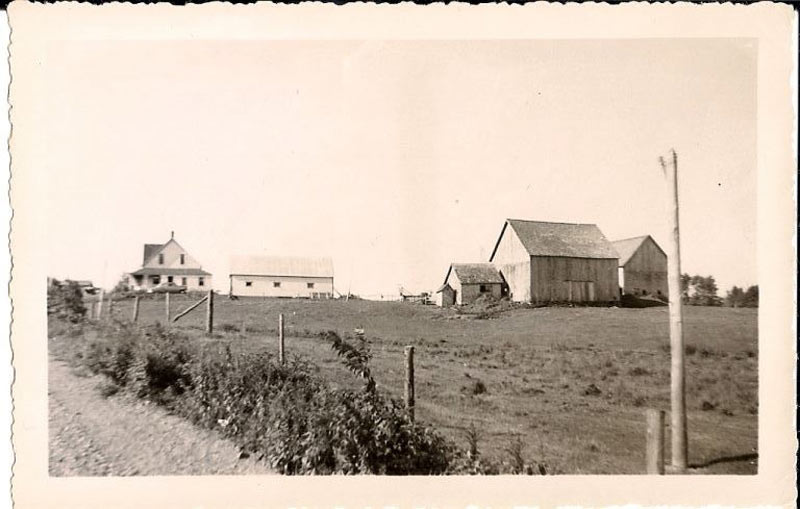 A historic landscape photo showing Lydia and Raymond Scott's farmland in Summer Hill.