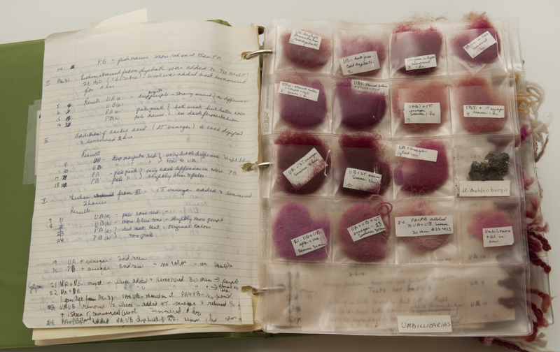 A binder of papers and plastic sleeves with a variety of red dyed fibers, Margaret Ferguson's research into dyes.