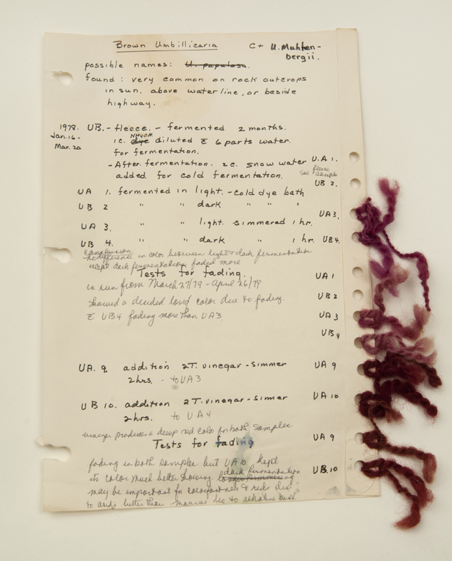 A handwritten page of paper with tassels of purple strings attached, the results of Margaret Ferguson's dye experiments.