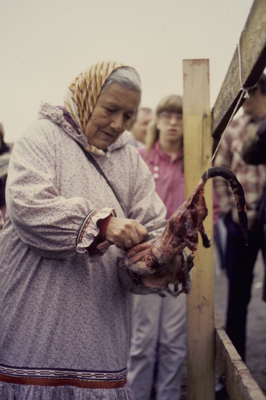 An elderly woman in a parka skins a muskrat tied to a wooden fence while a crowd watches.